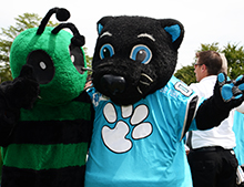 The Fighting Hornet and Sir Purr wave for the camera.
